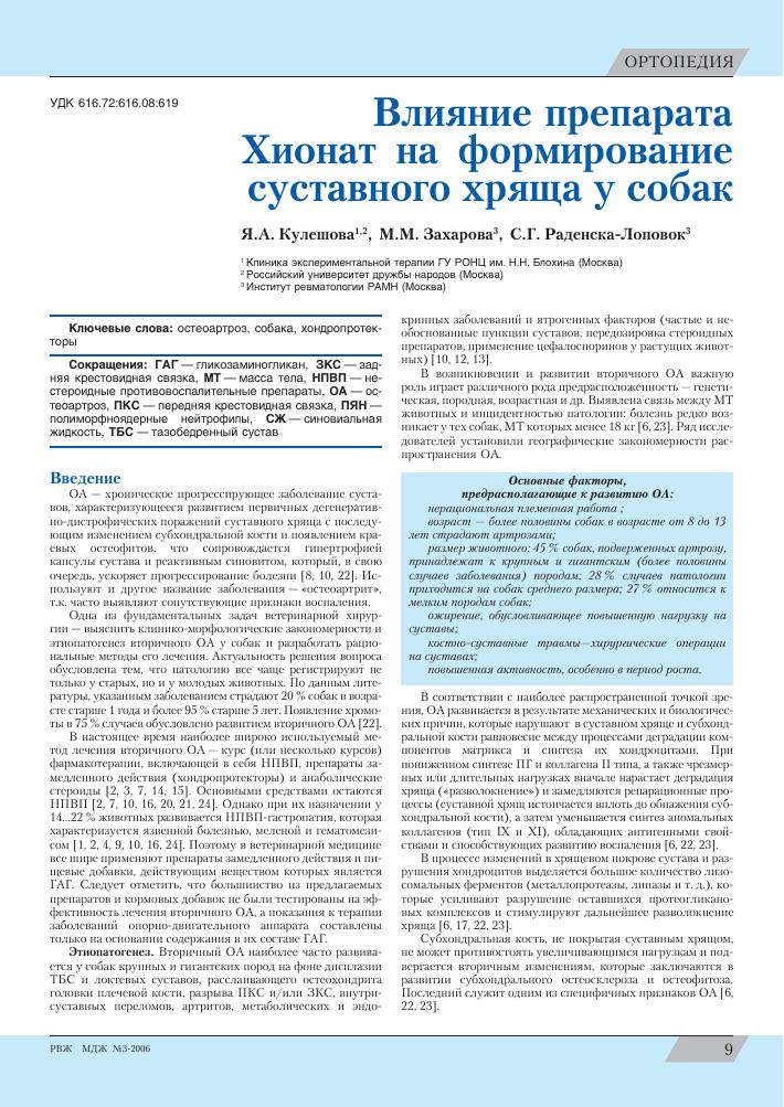 симптомы дисплазии тазобедренных суставов у лабрадоров