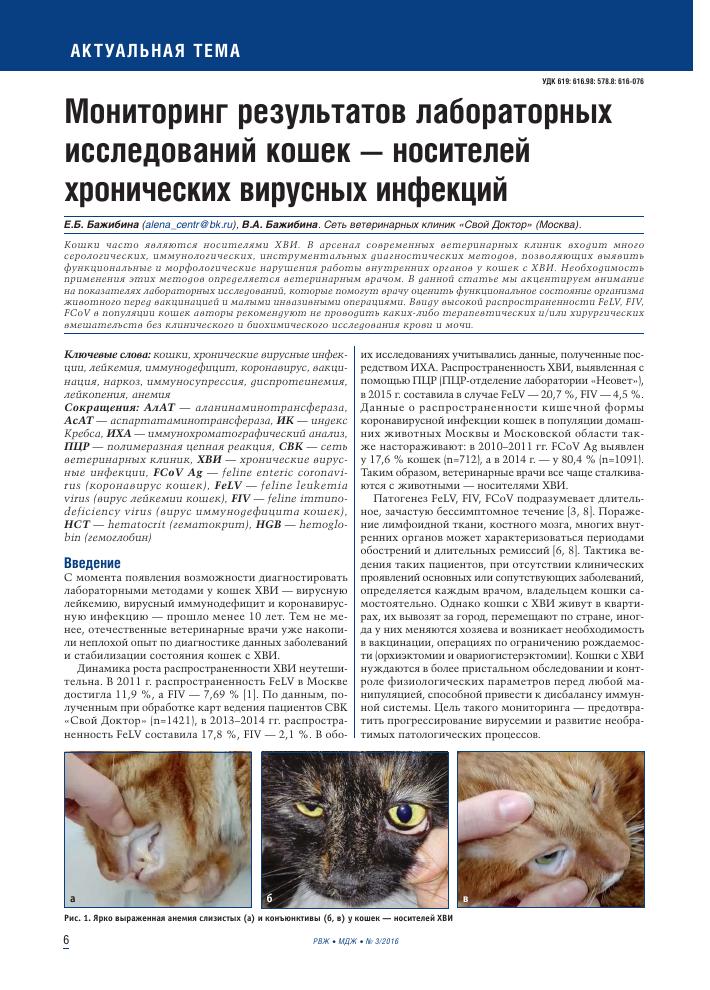 мониторинг результатов лабораторных исследований кошек