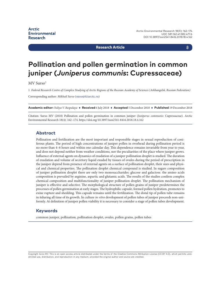 Pollination and pollen germination in common juniper (Juniperus